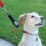 Ультразвуковая гаджет, который отучить собаку дергать поводок