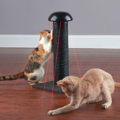 laser-light-scratching-post